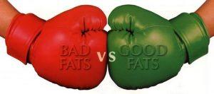 grassi buoni e cattivi